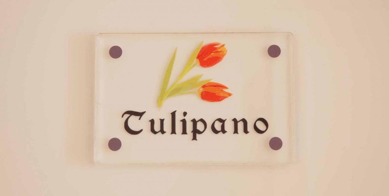 camera Tulipano Lilla